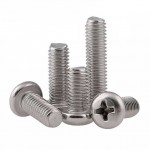 Pan Philips M2.5x10 A2 Stainless Steel Screw